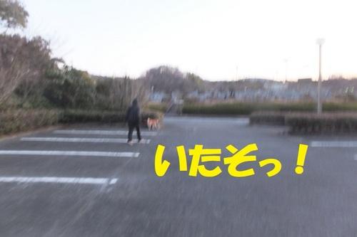 DSCF6964.JPG
