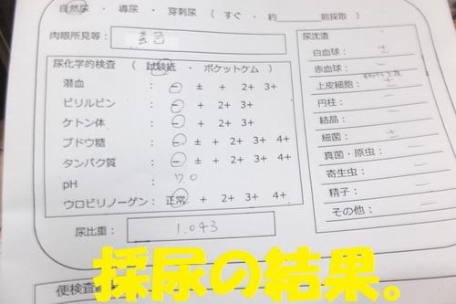 DSCF0532.JPG