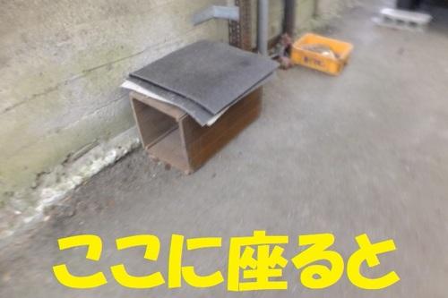 DSCF6822.JPG