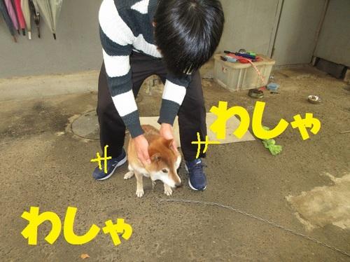 IMG_0576.JPG