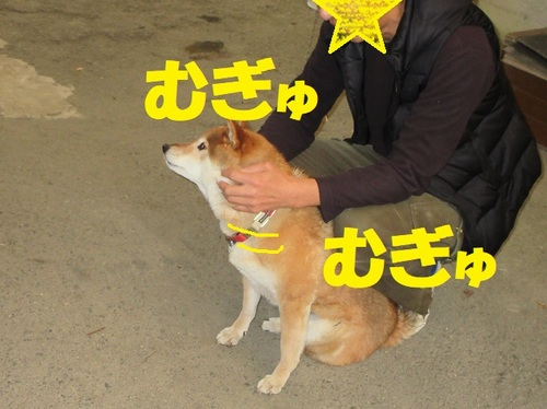 IMG_0661.JPG